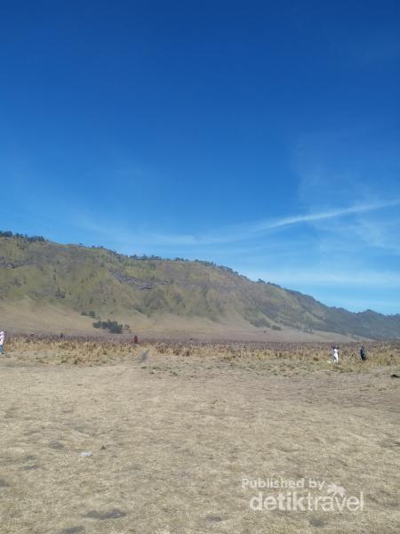 Para wisatawan yang berkunjung ke Bromo tidak akan melewatkan bukit ini