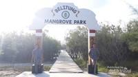 Gerbang Belitung Mangrove Park