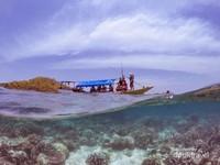 Keindahan bawah laut Gili Noko