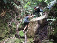 Saling bahu membahu saat trekking menerabas hutan belantara.