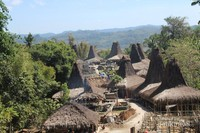 Kampung Adat Praijing yang terletak di kecamatan waikabubak, kabupaten sumba barat. Rumah adat sumba disebut juga uma mbatangu (rumah menara). Terdapat 3 bagian, bagian bawah untuk memelihara ternak, tengah untuk tempat tinggal, dan bagian atas untuk menyimpan bahan makanan.