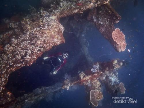 Keindahan Bawah Laut Bali Itu Ada di Tulamben