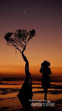 Sunset, Bulan, dan pohon indah di Pantai Walakiri.