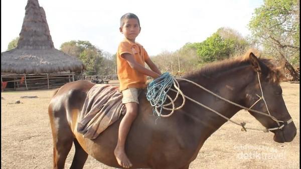 Keunikan warga lokal, dari kecil mereka sudah dapat menunggangi kuda.
