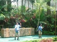 Pertunjukan Animal Show yang dipandu oleh kakak-kakak yang telah melatih beberapa burung dan hewan lainnya untuk unjuk kemampuan.