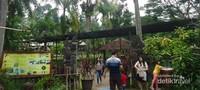 Sebelum pintu keluar, tersedia kran untuk mencuci tangan setelah mengeksplorasi tempat wisata dan terdapat juga papan informasi tentang tempat wisata  Dewi Kinnaris Bird Aviary.