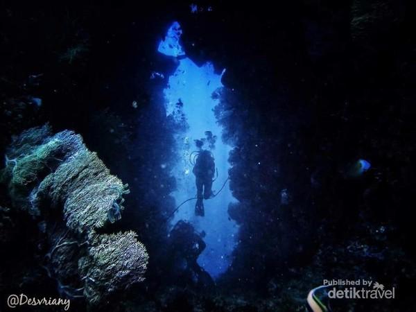 Dive Spot :Batu Belanda: banyak menemukan barel dan bunga karang dan gua-gua kecil dan celah-celah.