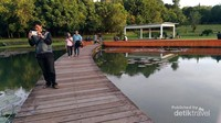 Jembatan Danau Dora