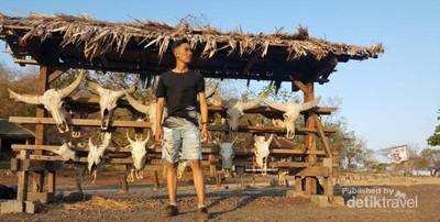 Petualangan Singkat di Banyuwangi