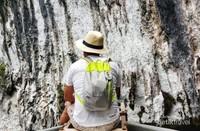 Goa di Kabui dengan stalaktitnya