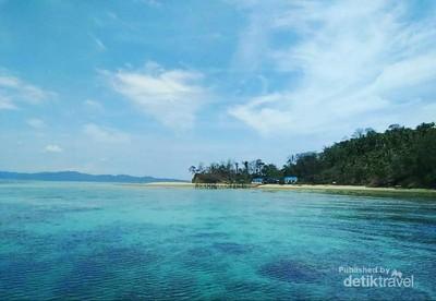 Pulau Pasoso, Rumahnya Penyu Hijau