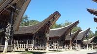 Sederetan Tongkonan dengan patung kepala kerbau dan tanduk-tanduk kerbau yang memiliki makna masing-masing