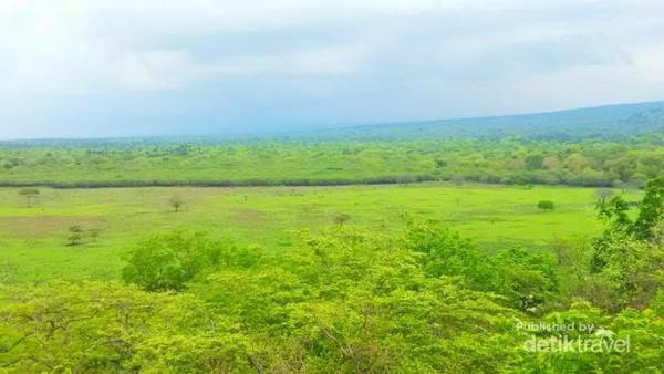 Taman Nasional Baluran, serpihan kecil Africa van Java
