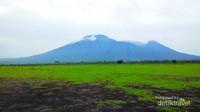 Dari Savana Bekol akan terlihat pemandanan ke Gunung Baluran