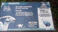 Ada informasi di setiap dinosaurus jadi bisa nambah wawasan deh