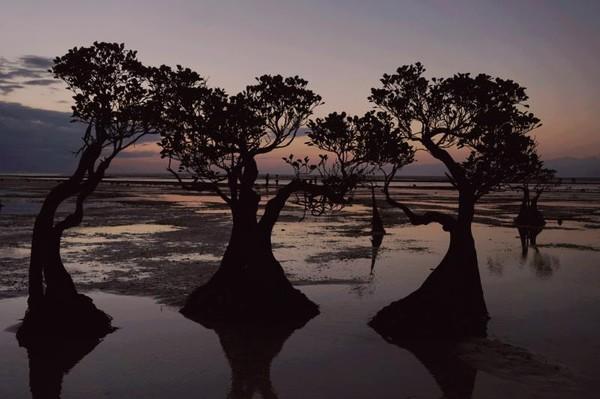 Sunset di Pantai Walakiri memiliki kecantikan luar biasa dengan warnanya yang begitu menawan