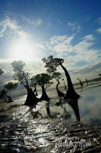 Waktu yang dinantikan oleh para wisatawan untuk menangkap kecantikan pantai ini adalah saat air laut surut