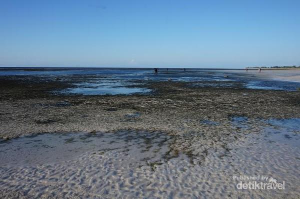 Bagian Pantai Walakiri bekas air laut yang surut, dimana wisatawan bisa berjalan cukup jauh dari bibir pantai
