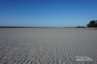 Hamparan pasir yang mengeras dan membentuk gundukan-gundukan atau garis-garis pasir