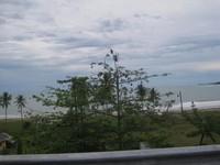 Pemandangan dari tepi jalan