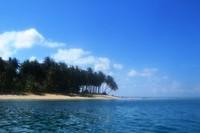 Pulau kosong yang ditumbuhi ratusan pohon kelapa