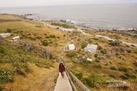 250 anak tangga menuju puncak mercusuar Cape Palliser.