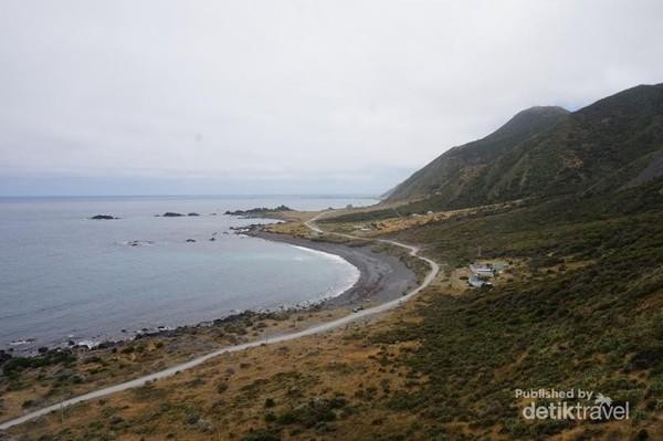 Panorama Palliser Bay dari atas mercusuar.