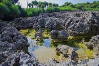 Genangan air di sela-sela karang membuat Pantai Widodaren terlihat unik