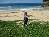 Eloknya Pantai Pringjono