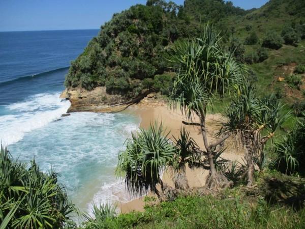 Pantai Pringjono dilihat dari atas