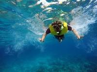 Foto underwater pun hasilnya sangat jernih