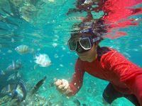 Traveler juga bisa bermain bersama ikan karang di bawah laut