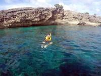 Snorkeling di Pulau Kambing yang punya pemandangan karang bawah laut