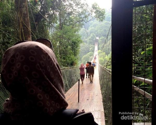 Mengamati jembatan dari pintu masuk