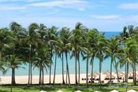 Deretan pohon kelapa menari indah menyambut anda.