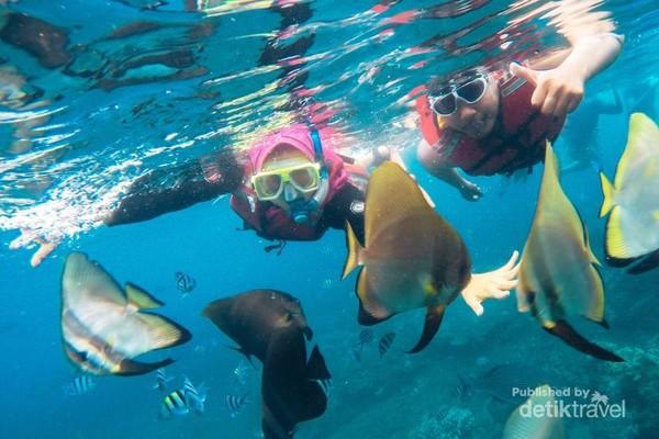 Snorkeling menikmati cantiknya dalam air pantai Bangsring