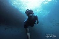 Menyelam lebih dalam untuk melihat terumbu karang