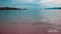 Warna pink tetap terlihat meski di dalam air