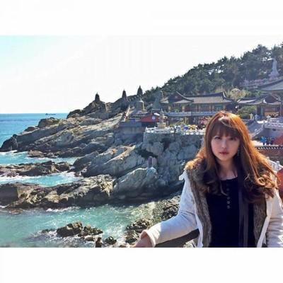 Pengalaman di Korea Selatan dan Sisi Liarnya