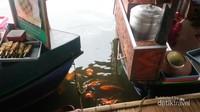 Sambil menikmati hidangan, traveler akan ditemani oleh ikan mas yang terdapat di sepanjang pinggiran danau