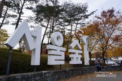 Indahnya Autumn di Seoul Forest, Korea Selatan