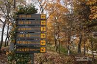 Di Seoul Forest terdapat petunjuk arah dan area mana yang ingin kita singgahi. Jadi jangan takut tersesat.