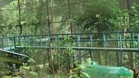 Terdapat sky bridge dalam kandang burung berukuran besar yang ada di kawasan ini