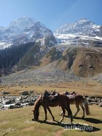Mencoba naik kuda poni untuk menjelajahi Sonamarg