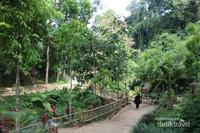 Jalan menuju lokasi yang sudah dibuat permanen memudahkan pengunjung yang datang.