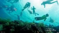 menikmati hamparan terumbu karang yang dipenuhi ikan ikan.