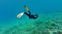 Maluku Utara begitu sempurna keindahan bawah lautnya.
