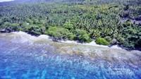 Pantai Kubung wajib didatangi bagi pecandu snorkeling dan freediving.