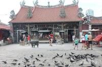 Kuil Goddes Of Mercy Temple, sangat indah apalagi banyak terdapat burung-burung yang sering beterbangan disini