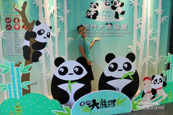 Boleh dong narsis foto dengan gambar panda..